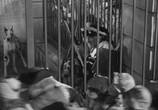Сцена из фильма Повесть о двух городах / A Tale of Two Cities (1935) Повесть о двух городах сцена 5