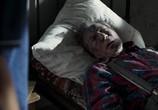 Кадр с фильма СуперБобровы торрент 014311 план 0