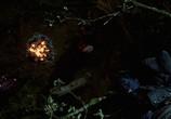 Кадр с фильма Люди Икс 0 торрент 071274 ухажер 0