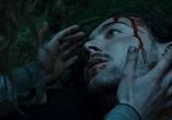 Кадр изо фильма Грибы торрент 00865 мужчина 0