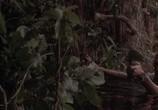 Кадр с фильма Анаконда торрент 029418 сцена 0