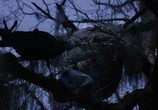 Кадр с фильма Крупная рыбина торрент 08027 эпизод 0