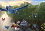 Сцена из фильма Рио 2 / Rio 2 (2014)
