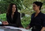 Сцена из фильма Правильная жена / The Good Wife (2010) Хорошая жена сцена 2