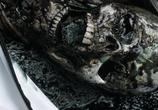 Скриншот фильма Спираль / Helix (2014)