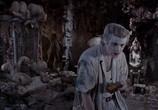 Кадр с фильма Эйс Вентура 0: Когда зовет свойство торрент 031173 эпизод 0