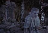 Кадр изо фильма Эйс Вентура 0: Когда зовет натура торрент 01523 любовник 0