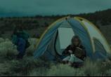 Кадр с фильма Дикая торрент 087989 план 0