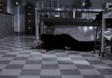 Кадр изо фильма Мертвая пир торрент 00587 любовник 0