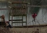 Кадр изо фильма Игра на прятушки торрент 037847 эпизод 0