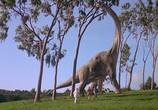 Кадр с фильма Парк Юрского периода: Трилогия торрент 091214 люди 0