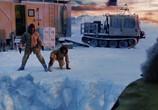 Кадр изо фильма Послезавтра торрент 00151 план 0