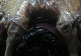 Кадр изо фильма Чужой торрент 010567 план 0