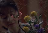 Кадр изо фильма Трудности перевода