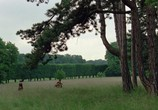 Кадр изо фильма Опасные блат торрент 08808 мужчина 0
