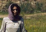 Кадр изо фильма Забивание камнями Сорайи М.