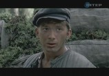Сцена из фильма Лето волков (2011) Капли крови на цветущем вереске сцена 6