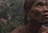 Кадр изо фильма Анаконда 0: Охота после Проклятой орхидеей торрент 00832 сцена 0