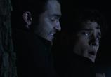 Кадр изо фильма Волчонок