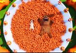 Кадр изо фильма Тайная живот домашних животных