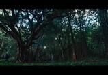Кадр изо фильма Хищники торрент 043132 люди 0