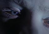 Кадр изо фильма Чужой 0