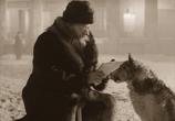 Кадр изо фильма Собачье душа торрент 02290 ухажер 0