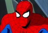Кадр изо фильма Человек-паук торрент 031881 мужчина 0