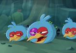 Кадр изо фильма Злые птички