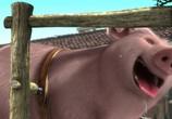 Скриншот фильма Гладиаторы Рима / Gladiatori di Roma (2013)