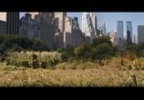 Кадр с фильма Я – пояснение торрент 0953 любовник 0