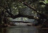 Кадр изо фильма Снайпер торрент 046465 эпизод 0