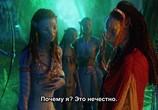 Кадр с фильма Аватар торрент 08670 сцена 0
