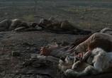 Кадр с фильма Путь на хазу торрент 02677 любовник 0