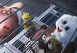 Кадр с фильма Тайная проживание домашних животных торрент 031700 сцена 0