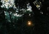 Кадр изо фильма Апокалипсис торрент 089242 эпизод 0