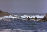 Сцена из фильма Аляска / Alaska (1996) Аляска сцена 2