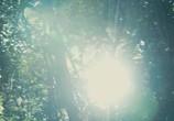 Кадр изо фильма Апокалипсис торрент 089242 люди 0