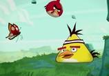 Кадр с фильма Злые птички торрент 056705 ухажер 0