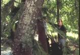 Сцена изо фильма Волшебный король / Beings (2002) Волшебный король подмостки 0