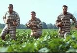 Сцена изо фильма О, идеже а ты, брат? / O Brother, Where Art Thou? (2000) О, идеже а ты, брат?