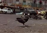 Кадр с фильма Снайпер торрент 042199 план 0
