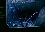 Кадр с фильма Нечто торрент 03329 сцена 0