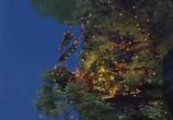 Кадр изо фильма Замбезия торрент 005641 люди 0