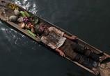 Сцена из фильма Джунгли (2012)