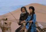 Сцена изо фильма Рожденный на песках / The Young Black Stallion (2004) Рожденный на песках театр 0