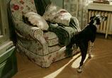 Сцена с фильма Брюс Всемогущий / Bruce Almighty (2003)