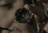 Кадр изо фильма Большой Куш торрент 00592 сцена 0