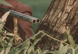 Кадр изо фильма Летучая мышь