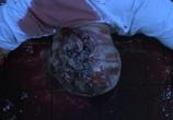 Кадр с фильма Пила: Финальная Коллекция торрент 000326 эпизод 0